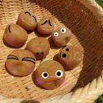 甘い梅干しの作り方とカビない方法!