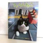 屋根の上には、猫しか知らない世界が待っていた!「てっぺんねこ」