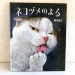 猫が好きな人間はハマル!?ネコの本性が垣間見れる【リアル猫絵本】「ネコヅメのよる」