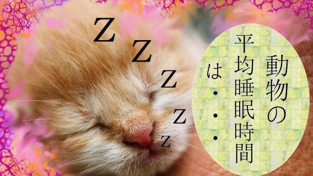 動物の平均睡眠時間 1