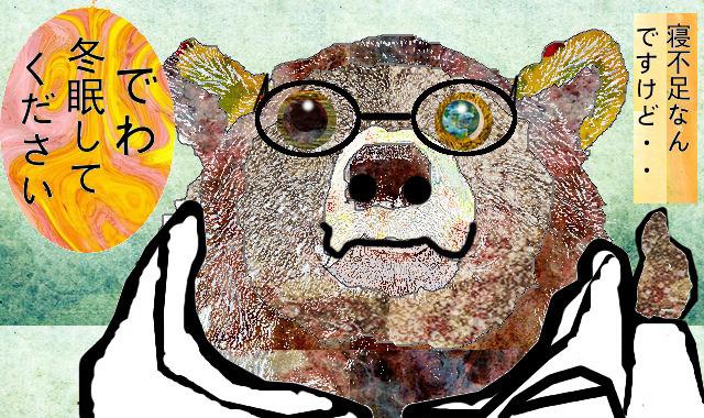 クマの冬眠について